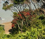 Breeze Cottage View