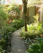 Nikaus Cottage Path