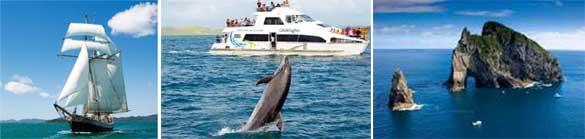bay-of-islands-cruises