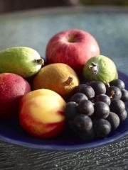 Fruit bowl latham